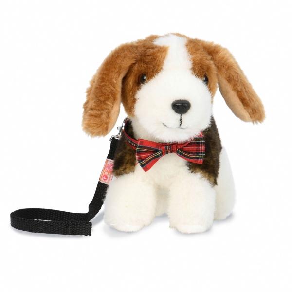 Beagle Pup_BD37751_beagle