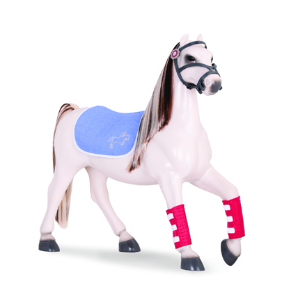 Equine Fashion Set